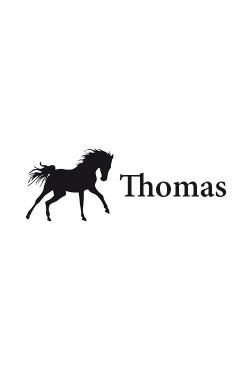 Broderie cheval 1 prenom